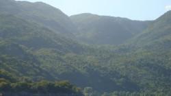 Lush mountain range